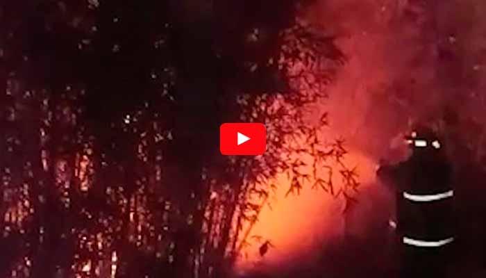 incendio en Montenegro 16 damnificados