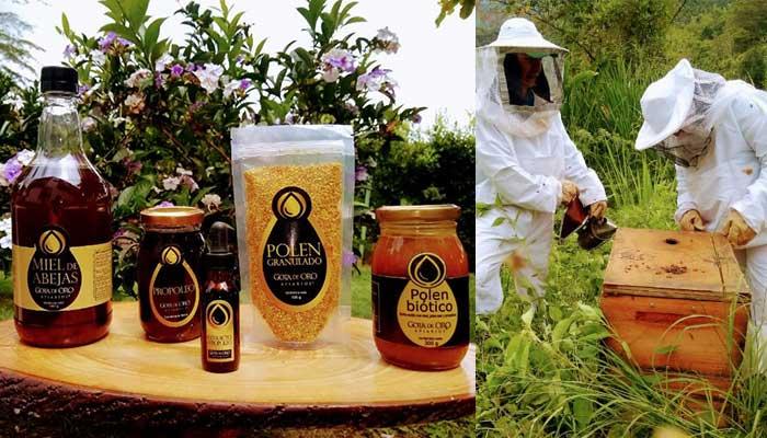 miel de abejas en el Quindío