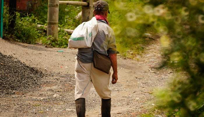 ¿Por qué no bajan precios de insumos agrícolas el Día sin Iva? La justa petición de los campesinos colombianos